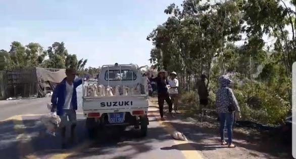 Lật xe chở gần 2.000 con vịt, người giúp tài xế, người ra tay hôi của - Ảnh 1.