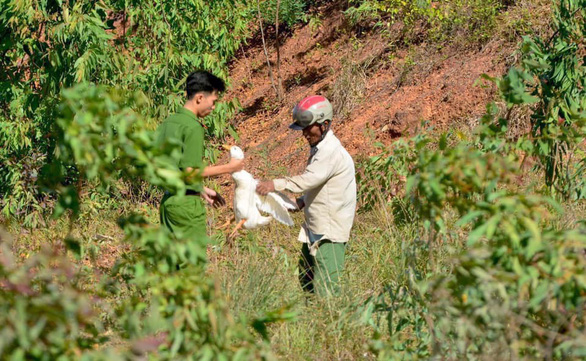 Lật xe chở gần 2.000 con vịt, người giúp tài xế, người ra tay hôi của - Ảnh 2.
