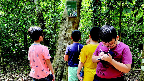 Hè cho con vô rừng giải ngố, học kỹ năng sinh tồn - Ảnh 4.