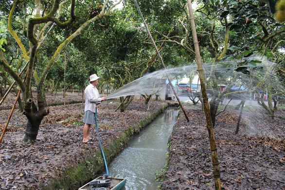 Bất ngờ lá, vỏ, hạt chôm chôm Việt thành mỹ phẩm cao cấp nhất thế giới - Ảnh 2.