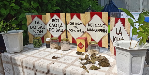 Ứng dụng nano điều chế trà thảo dược ngừa tiểu đường - Ảnh 1.