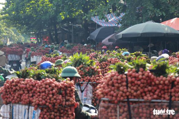 Vào chính vụ vải thiều Bắc Giang vẫn 60.000 đồng/kg - Ảnh 1.