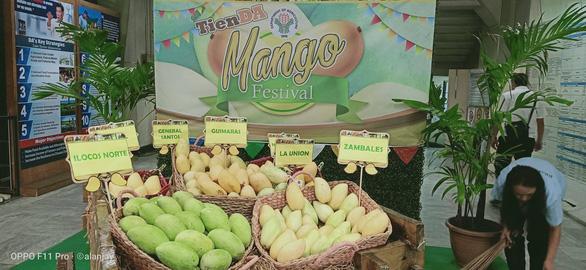 Nông dân Philippines trúng mùa xoài, bán rẻ như cho - Ảnh 2.