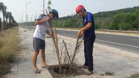 Hơn 100 nắp cống bị lấy trộm trên đường đẹp nhất Phú Quốc - Ảnh 1.