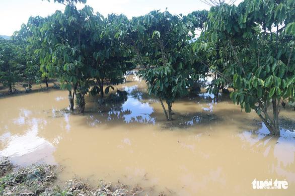 Sau mưa lớn, ngoại ô TP Bảo Lộc chìm trong biển nước - Ảnh 4.