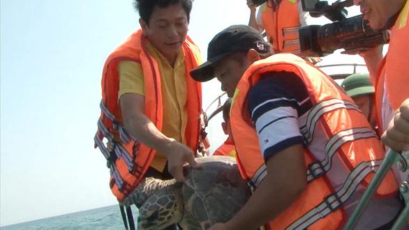 Ông Lại thả rùa về biển - Ảnh 1.