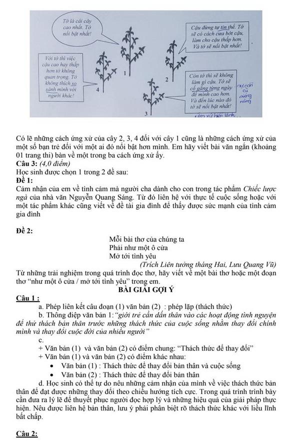 Gợi ý bài làm môn văn lớp 10 TP.HCM - Ảnh 3.