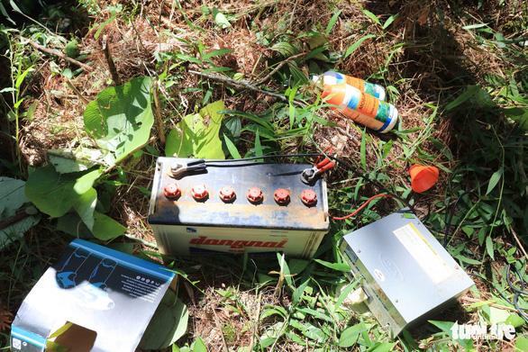 Nghi phạm chủ mưu hạ sát 3.500 cây thông bị bắt tại Lào - Ảnh 2.