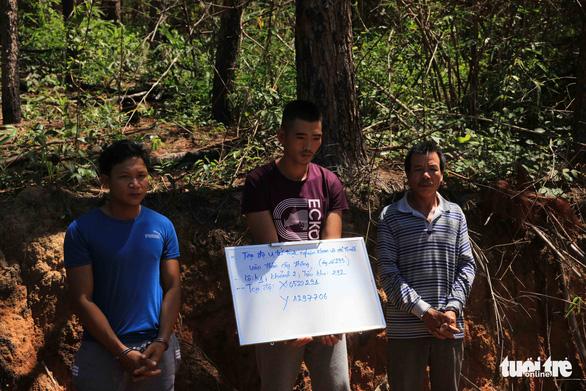 Nghi phạm chủ mưu hạ sát 3.500 cây thông bị bắt tại Lào - Ảnh 1.