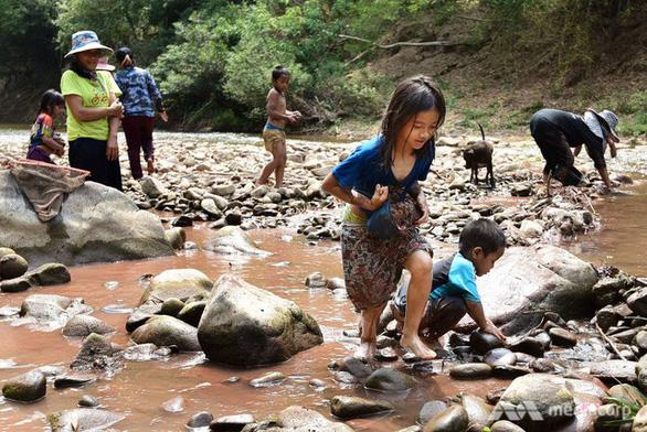 Ngôi trường dạy học sinh ra sông bắt cá, vào rừng sinh tồn - Ảnh 1.