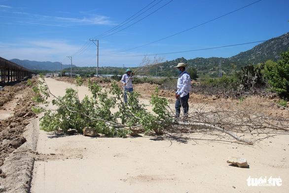 Dân đặt hàng trăm đá tảng chặn xe dự án nhà máy điện mặt trời - Ảnh 2.
