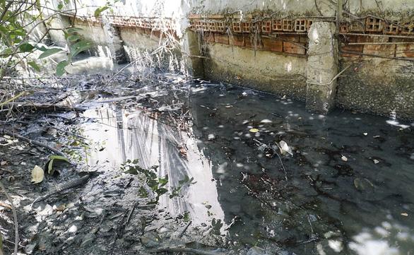 Nông thôn: bức tử sông rạch, án mạng từ cái chuồng heo... - Ảnh 1.