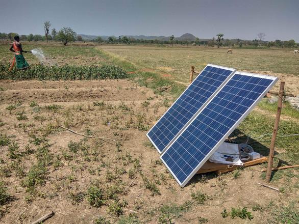 Nông dân Ấn Độ dùng… năng lượng mặt trời để tưới cây - Ảnh 1.