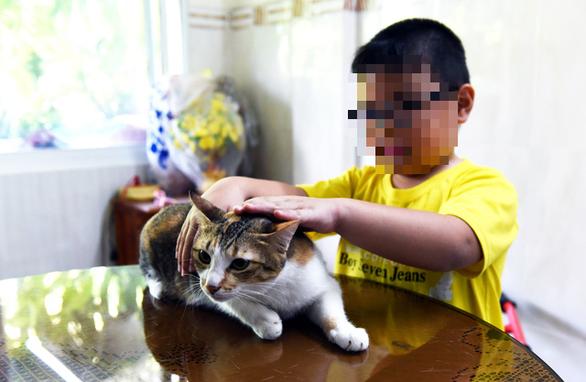 Mèo cào nguy hiểm như chó cắn - Ảnh 1.