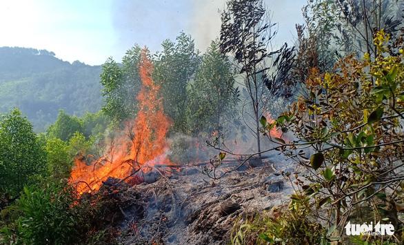 Hơn 900 người chữa cháy rừng ở Nghệ An trong đêm - Ảnh 2.