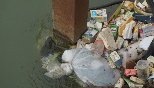 Ớn lạnh với xác heo chết, rác thải trên nguồn nước cấp cho TP Thanh Hóa - Ảnh 1.