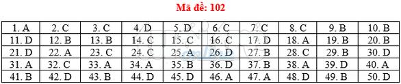 Bài giải gợi ý môn toán thi THPT quốc gia 2019 - đủ 24 mã đề - Ảnh 3.