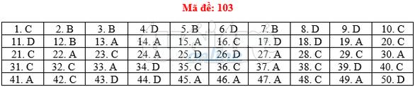 Bài giải gợi ý môn toán thi THPT quốc gia 2019 - đủ 24 mã đề - Ảnh 4.
