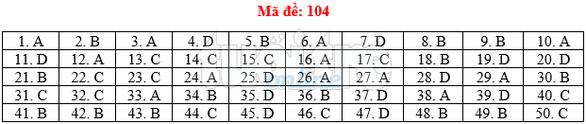 Bài giải gợi ý môn toán thi THPT quốc gia 2019 - đủ 24 mã đề - Ảnh 5.