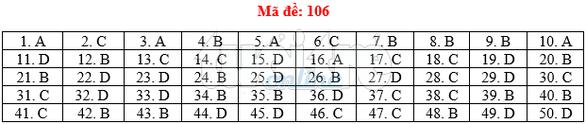 Bài giải gợi ý môn toán thi THPT quốc gia 2019 - đủ 24 mã đề - Ảnh 7.