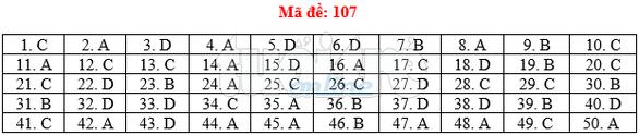 Bài giải gợi ý môn toán thi THPT quốc gia 2019 - đủ 24 mã đề - Ảnh 8.
