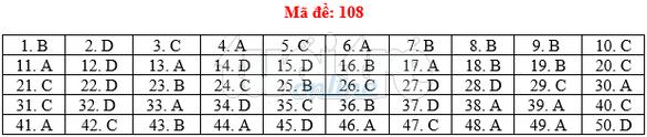 Bài giải gợi ý môn toán thi THPT quốc gia 2019 - đủ 24 mã đề - Ảnh 9.