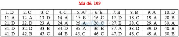 Bài giải gợi ý môn toán thi THPT quốc gia 2019 - đủ 24 mã đề - Ảnh 10.