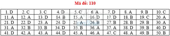 Bài giải gợi ý môn toán thi THPT quốc gia 2019 - đủ 24 mã đề - Ảnh 11.