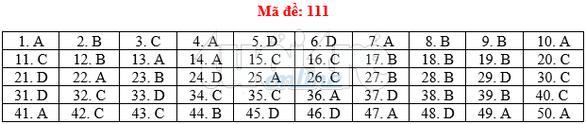 Bài giải gợi ý môn toán thi THPT quốc gia 2019 - đủ 24 mã đề - Ảnh 12.