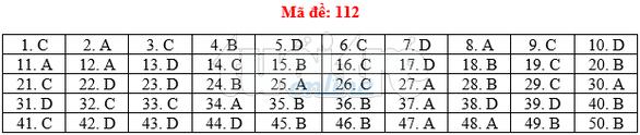 Bài giải gợi ý môn toán thi THPT quốc gia 2019 - đủ 24 mã đề - Ảnh 13.