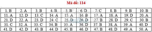 Bài giải gợi ý môn toán thi THPT quốc gia 2019 - đủ 24 mã đề - Ảnh 15.