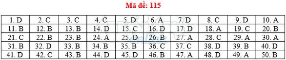 Bài giải gợi ý môn toán thi THPT quốc gia 2019 - đủ 24 mã đề - Ảnh 16.