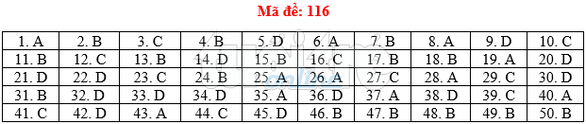 Bài giải gợi ý môn toán thi THPT quốc gia 2019 - đủ 24 mã đề - Ảnh 17.