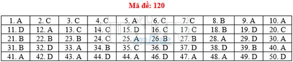Bài giải gợi ý môn toán thi THPT quốc gia 2019 - đủ 24 mã đề - Ảnh 21.