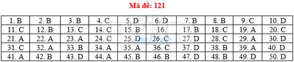 Bài giải gợi ý môn toán thi THPT quốc gia 2019 - đủ 24 mã đề - Ảnh 22.