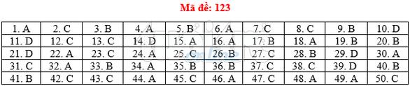 Bài giải gợi ý môn toán thi THPT quốc gia 2019 - đủ 24 mã đề - Ảnh 24.