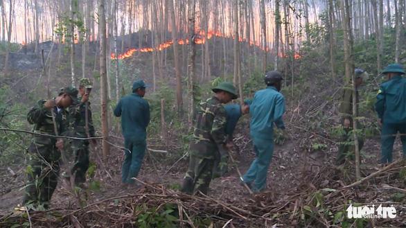 Hàng trăm hecta rừng trồng cháy ngùn ngụt cả ngày - Ảnh 3.