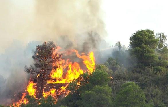 Nắng nóng ở châu Âu: Hơn 5.500ha rừng ở Tây Ban Nha bị thiêu rụi - Ảnh 1.