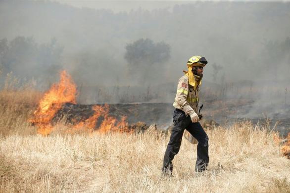 Nắng nóng ở châu Âu: Hơn 5.500ha rừng ở Tây Ban Nha bị thiêu rụi - Ảnh 2.