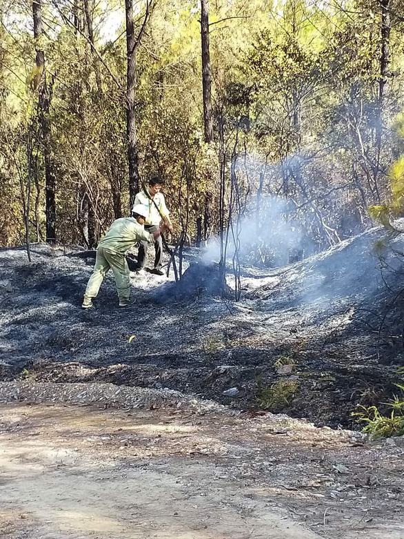 Cháy rừng uy hiếp đường dây 500 kV, EVN báo cáo Thủ tướng - Ảnh 1.
