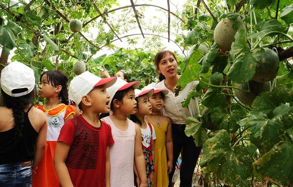 Thầy cô, cha mẹ cuốc đất trồng rau, khoai lang, bí đỏ... đủ cho cả trường - Ảnh 1.