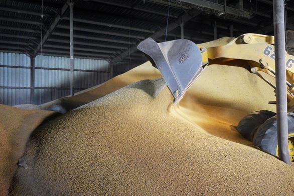 Bất ngờ trước G20, Mỹ công bố Trung Quốc mua 544.000 tấn đậu nành - Ảnh 1.