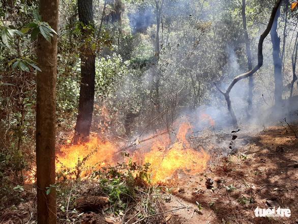 Rừng thông lại chìm trong lửa, Hà Tĩnh cấp tập di dời dân, bảo vệ trạm xăng - Ảnh 16.