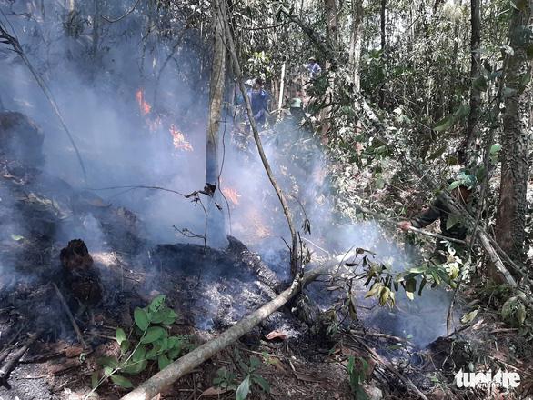 Rừng thông lại chìm trong lửa, Hà Tĩnh cấp tập di dời dân, bảo vệ trạm xăng - Ảnh 18.