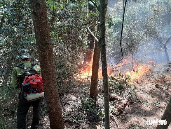 Rừng thông lại chìm trong lửa, Hà Tĩnh cấp tập di dời dân, bảo vệ trạm xăng - Ảnh 19.