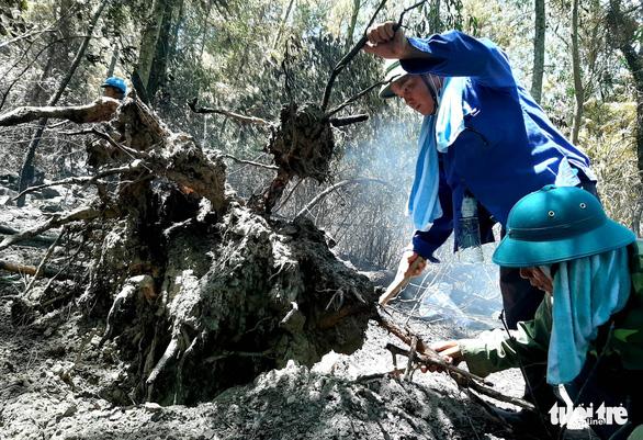 Rừng thông lại chìm trong lửa, Hà Tĩnh cấp tập di dời dân, bảo vệ trạm xăng - Ảnh 23.
