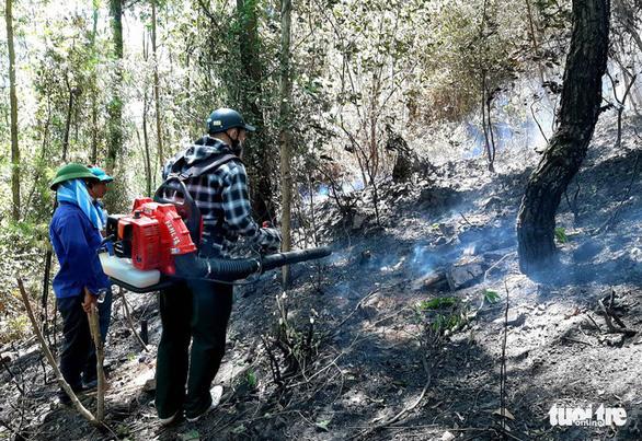 Một phụ nữ tử vong khi chữa cháy rừng ở Nghệ An - Ảnh 1.