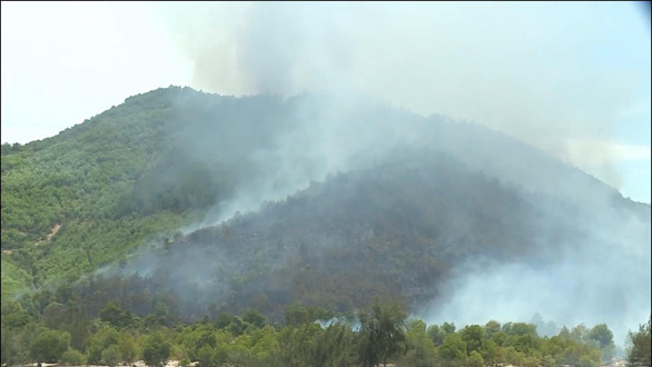 Đến lượt rừng thông ở Quảng Bình bốc cháy trong nắng nóng - Ảnh 2.