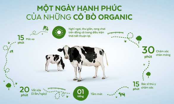Ngạc nhiên nơi bò được chăm sóc bằng vườn thuốc nam - Ảnh 4.