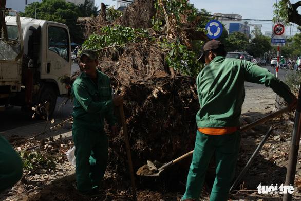 Chặt hạ cây xanh vỉa hè rồi dùng xe cẩu toan tính chở cây đi - Ảnh 3.
